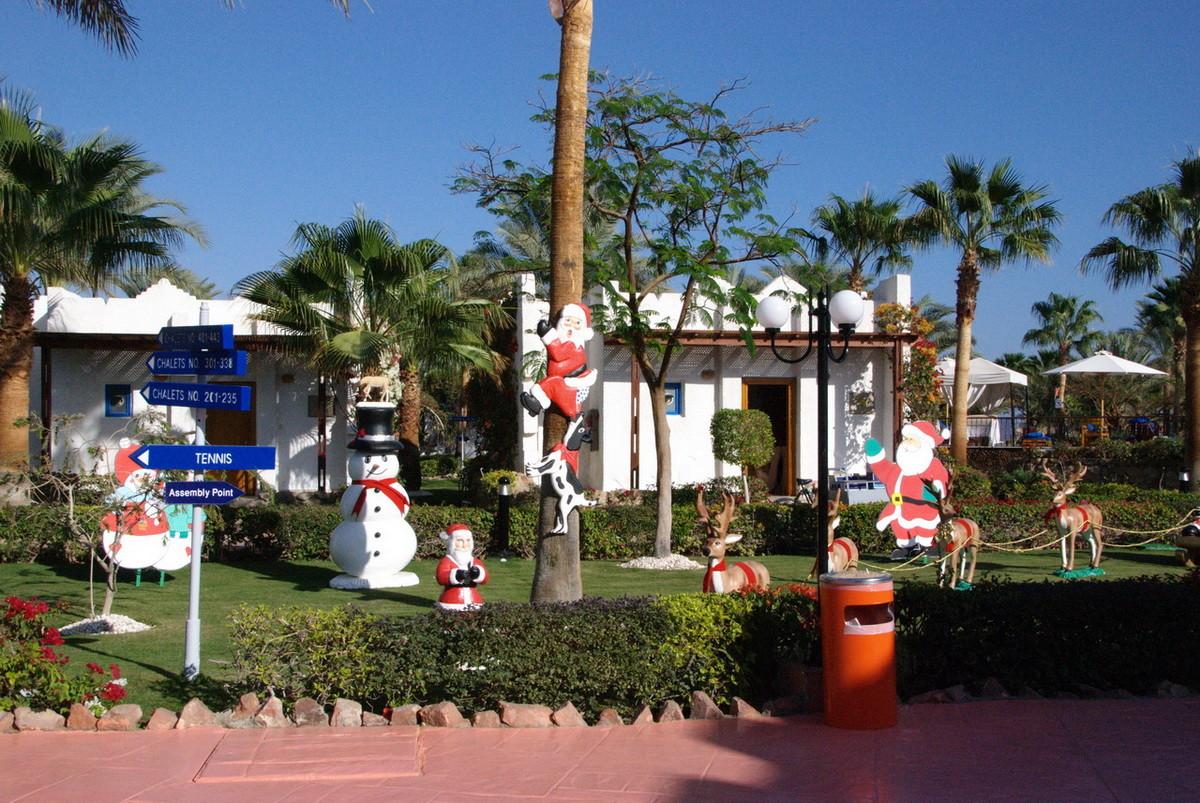 Weihnachten am Strand - da geht der Niklaus auf die Palme