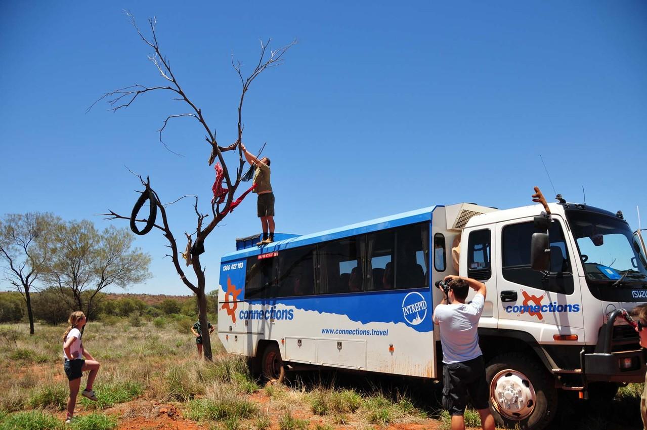 Der Fashion Tree - hier dürfen sich Aborigines bedienen