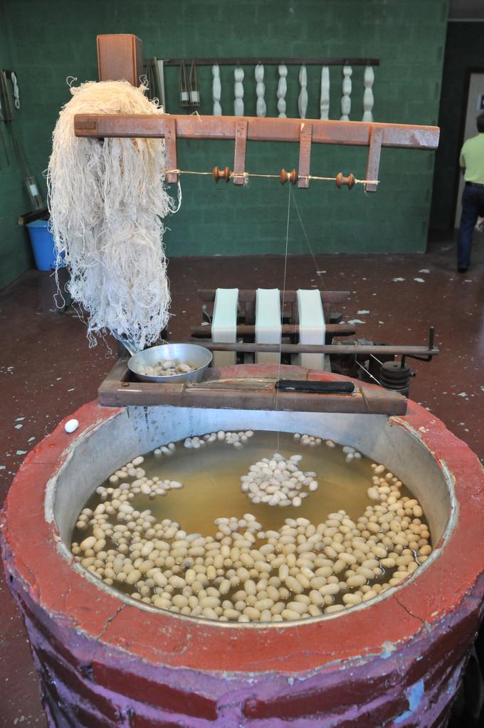 Aufbereitung der Seiden-Cocons