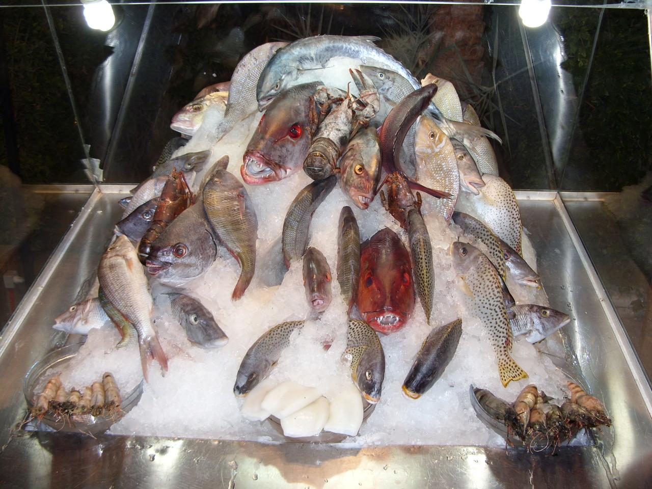 Mit reichhaltigem Fisch Buffet