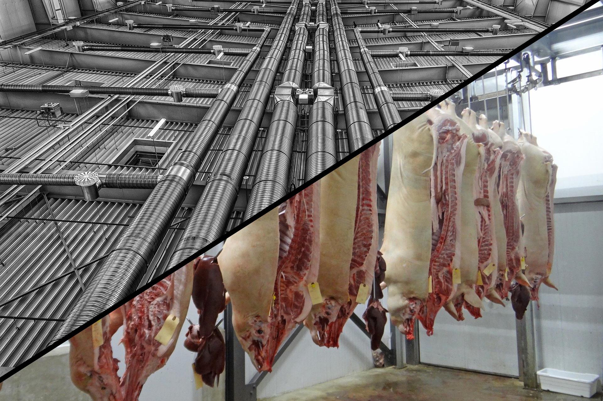 Dicke Luft in der Fleischindustrie, Dr. Nicole Raiss