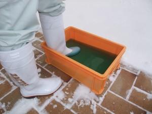 冬季の場内の除菌にはウインターベッセルサニー