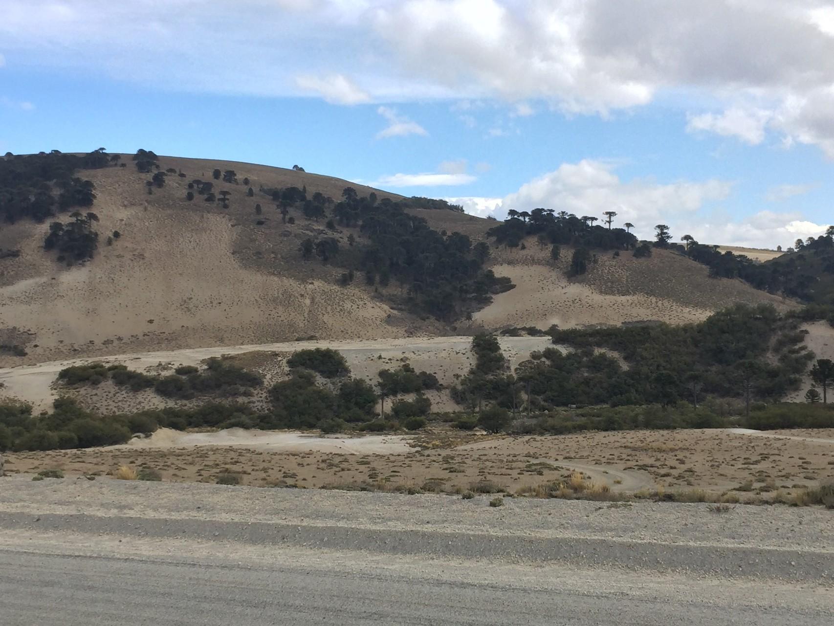 Abzweige der chilenischen Grenze entlang----