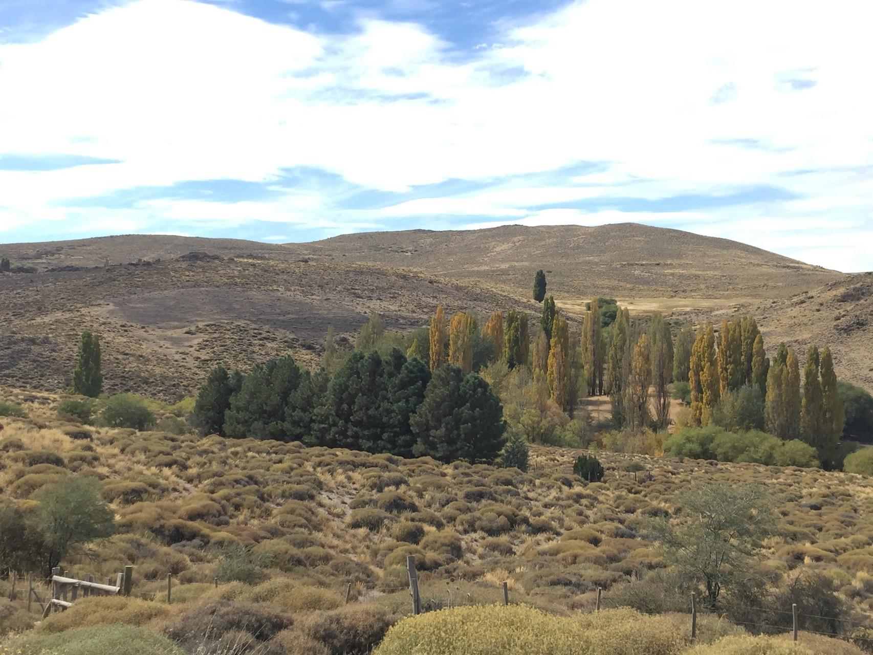 Herbst im Valle Aluminé