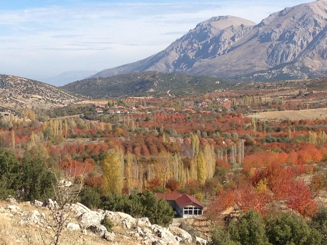 ....es ist auch in der Türkei Herbst!