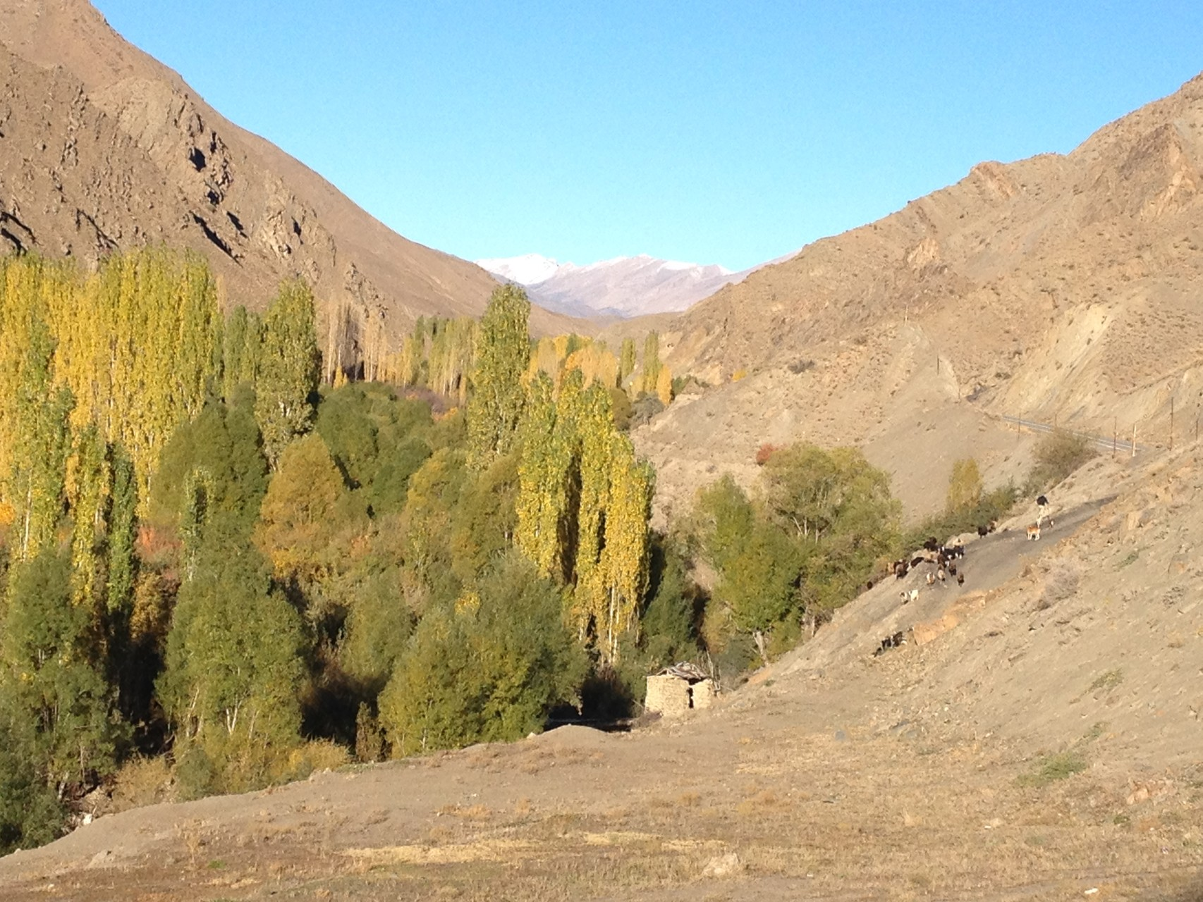 Im Tal von Baladeh