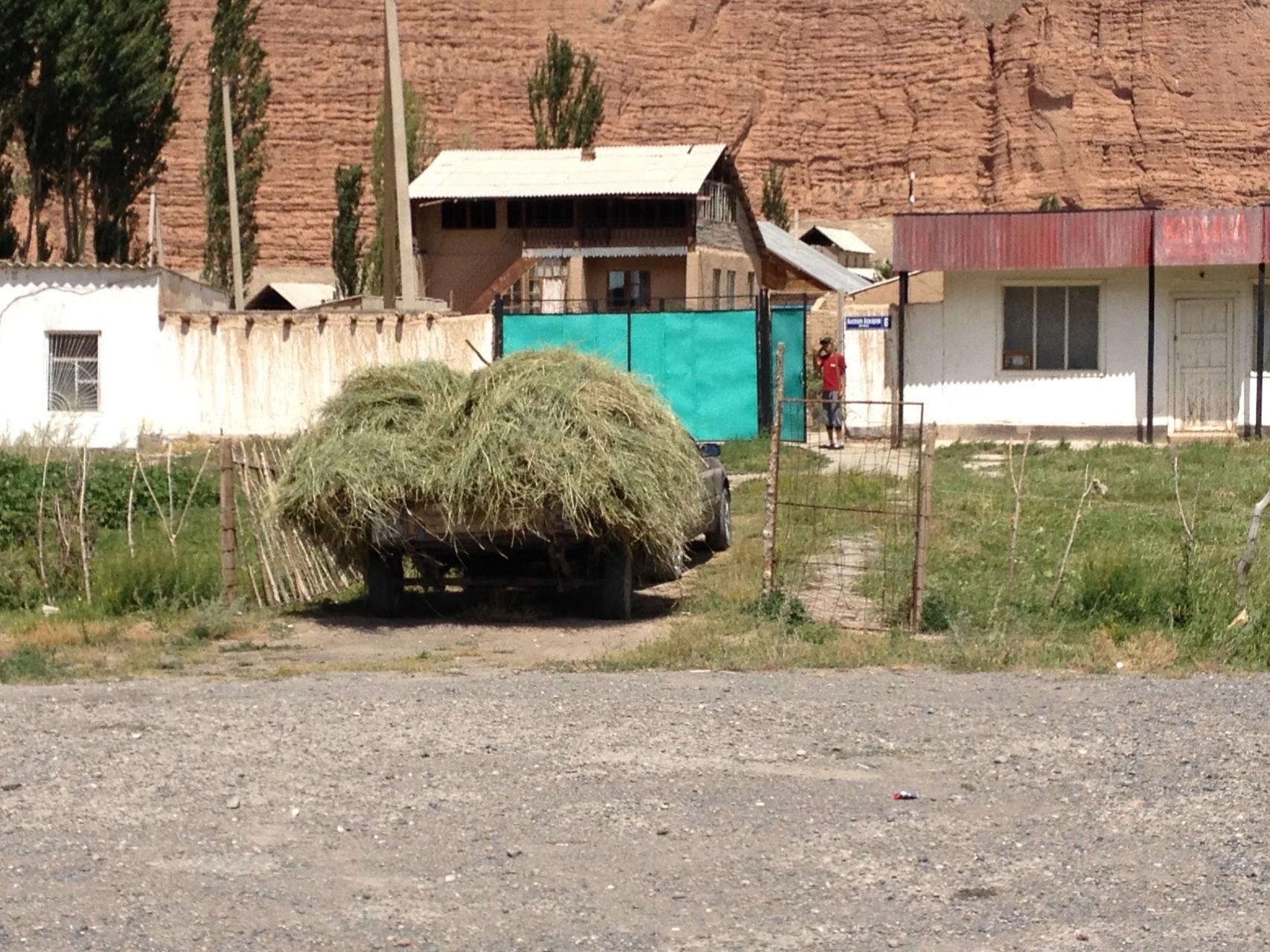 Auf dem Dorf