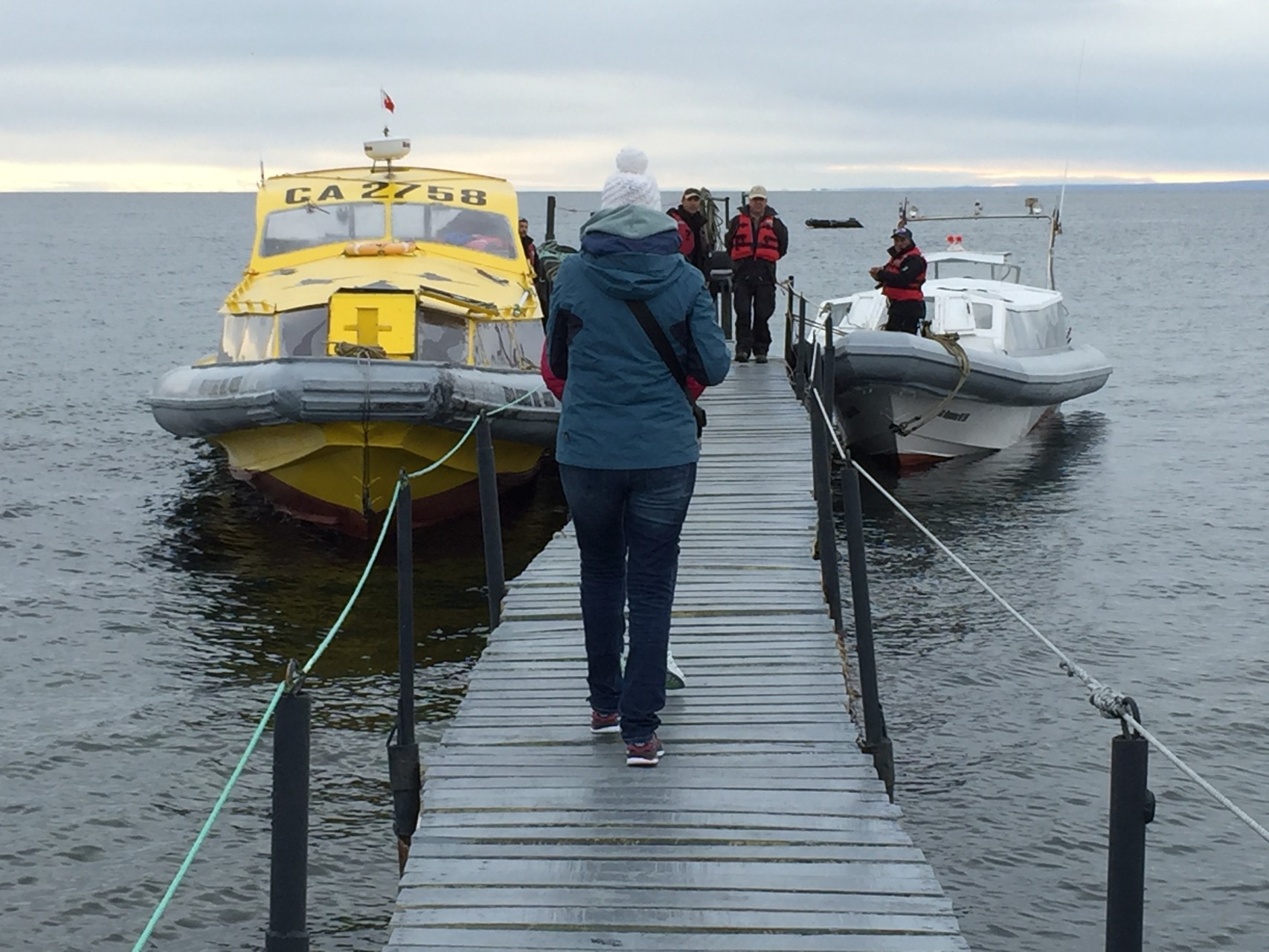 Ausflug zu den Seelöwen und Pinguinen