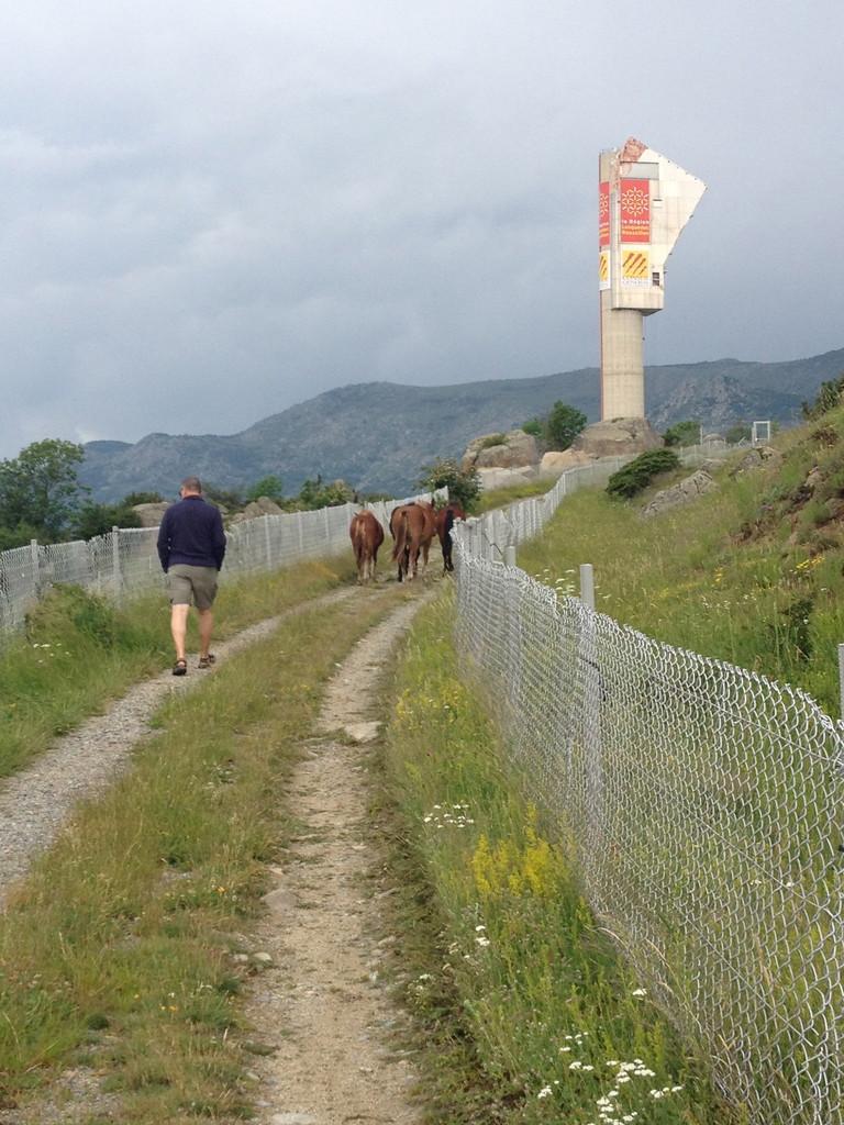 Targasonne Solar mit den Pferden