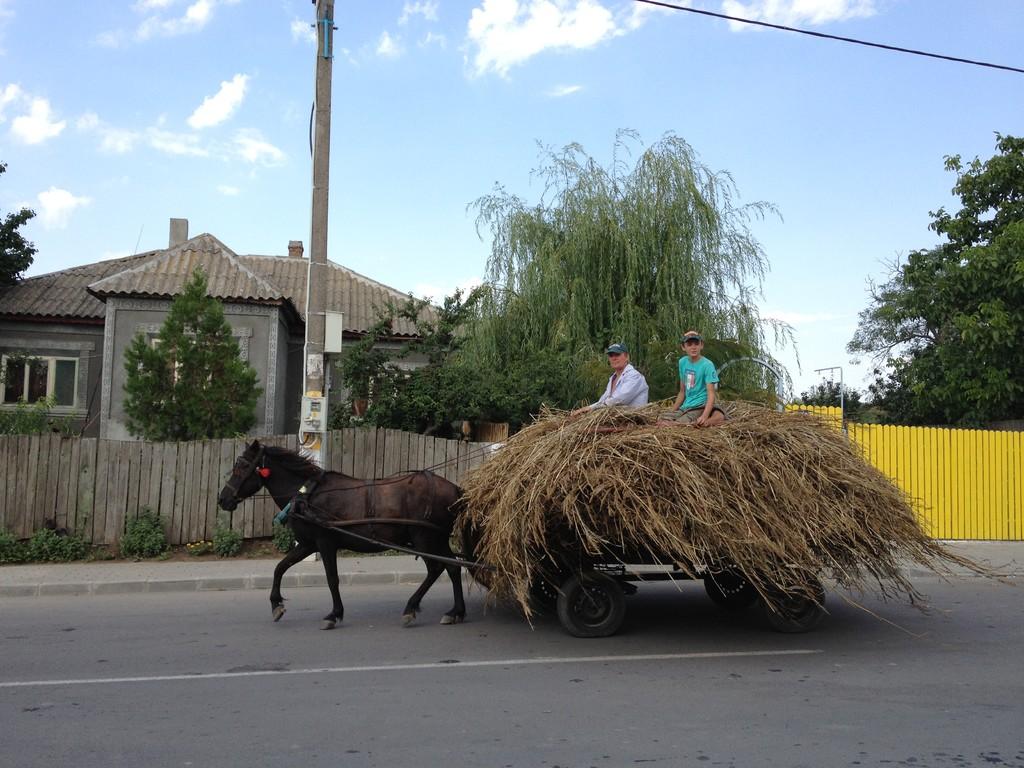Häufig sehen wir Esel- oder Pferdefuhrwerke