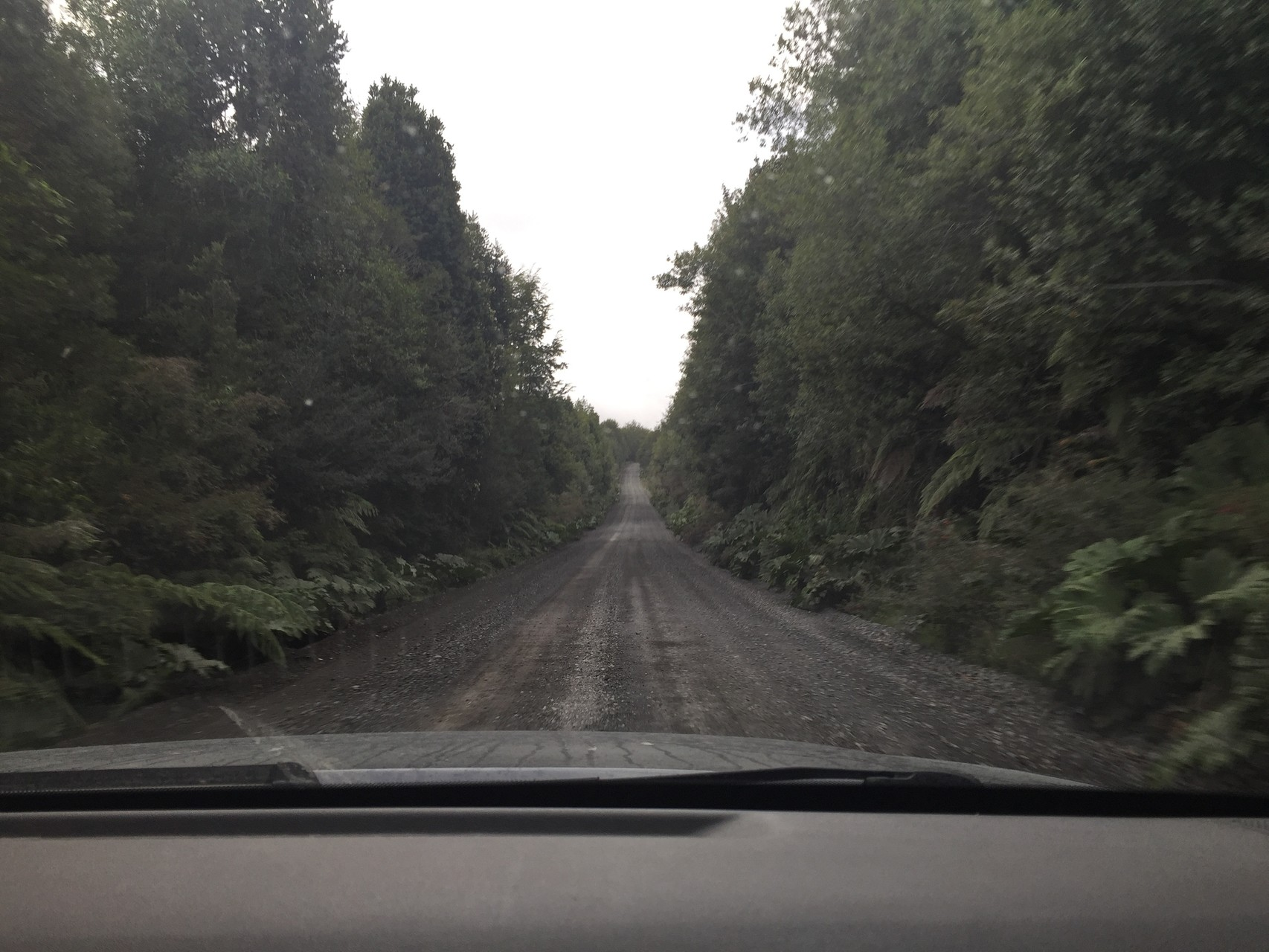 Carretera durch den Pumalinpark