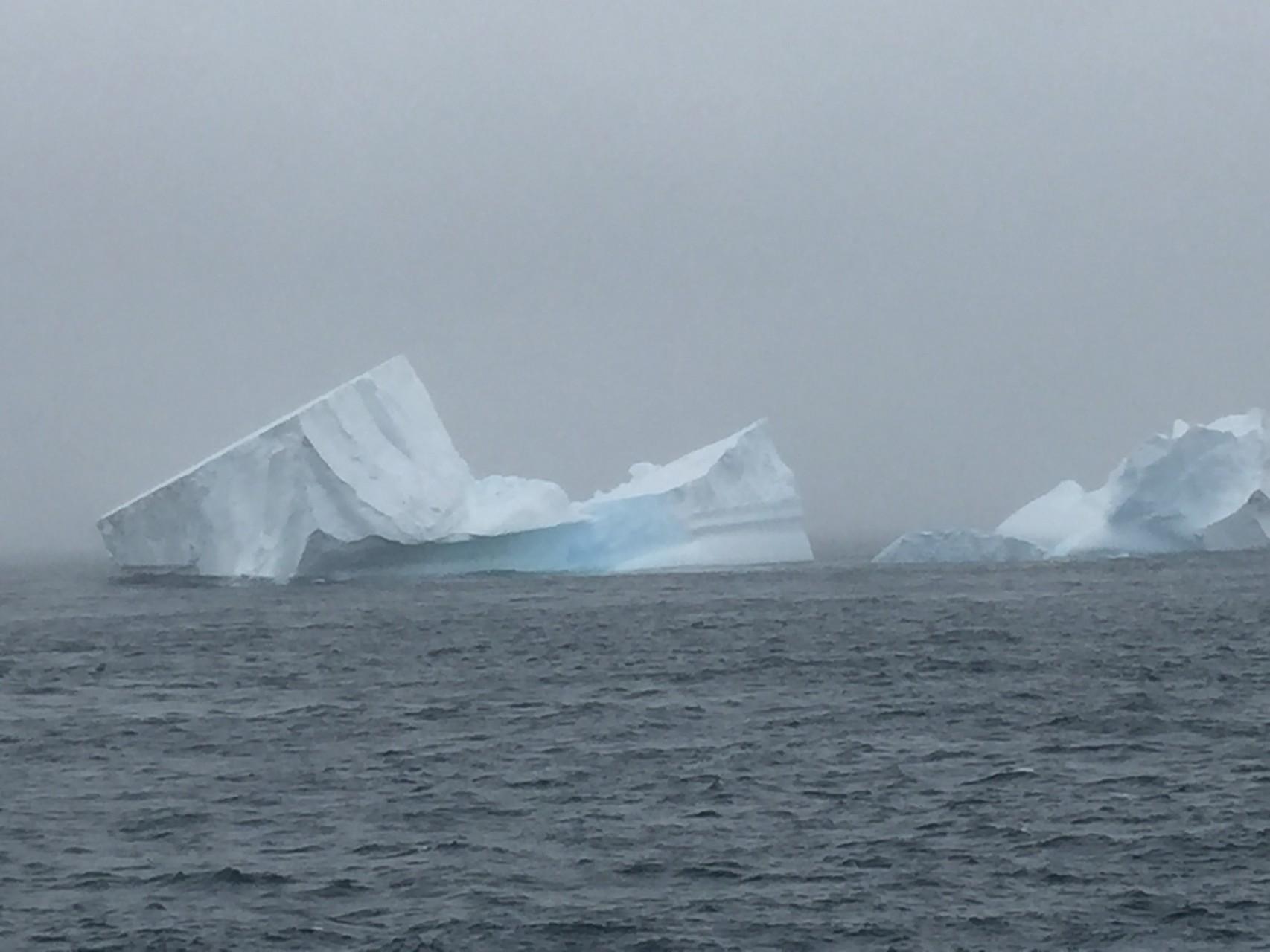 Eisberge im