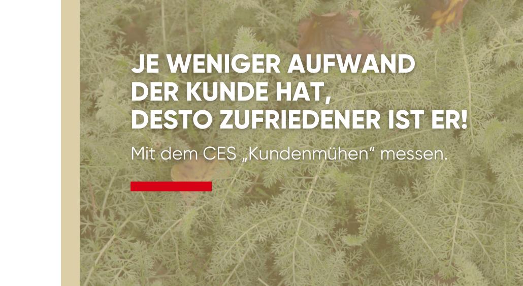 CES: Customer Effort Score