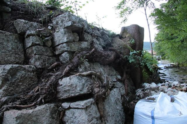 Alors là vous avez les dégâts des racines du grand sapin qui se sont insérés sous les  pierres et les ont  soulevés