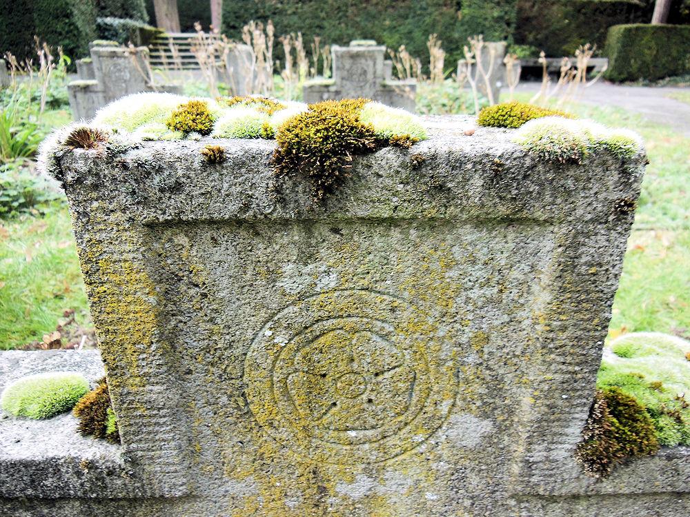 Bewachsener Grabstein, Foto: F. Handel
