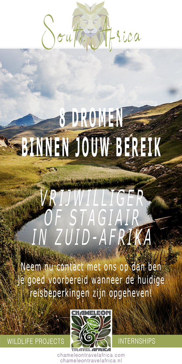 Stage in Zuid-Afrika