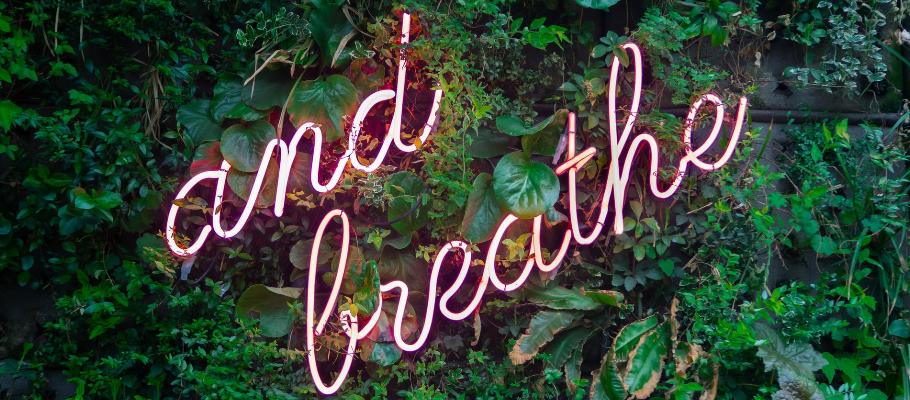 """Neon Sign """"and breathe"""" auf von Pflanzen bedeckter Wand"""