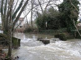 Rivière en Sologne