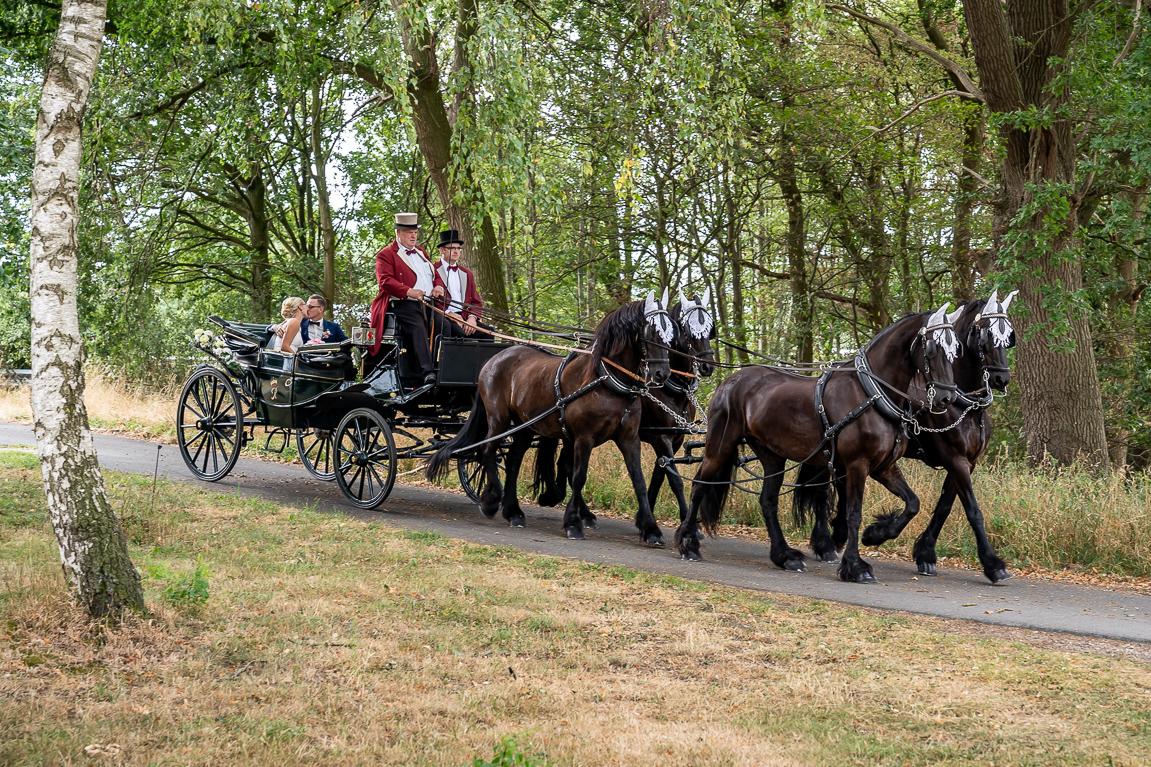 Vintage Hochzeit mit Pferdekutsche