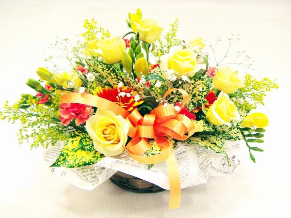 誕生日・各種お祝い・お見舞い・お礼