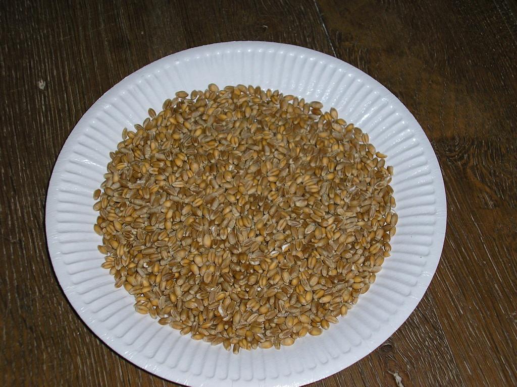 Le blé