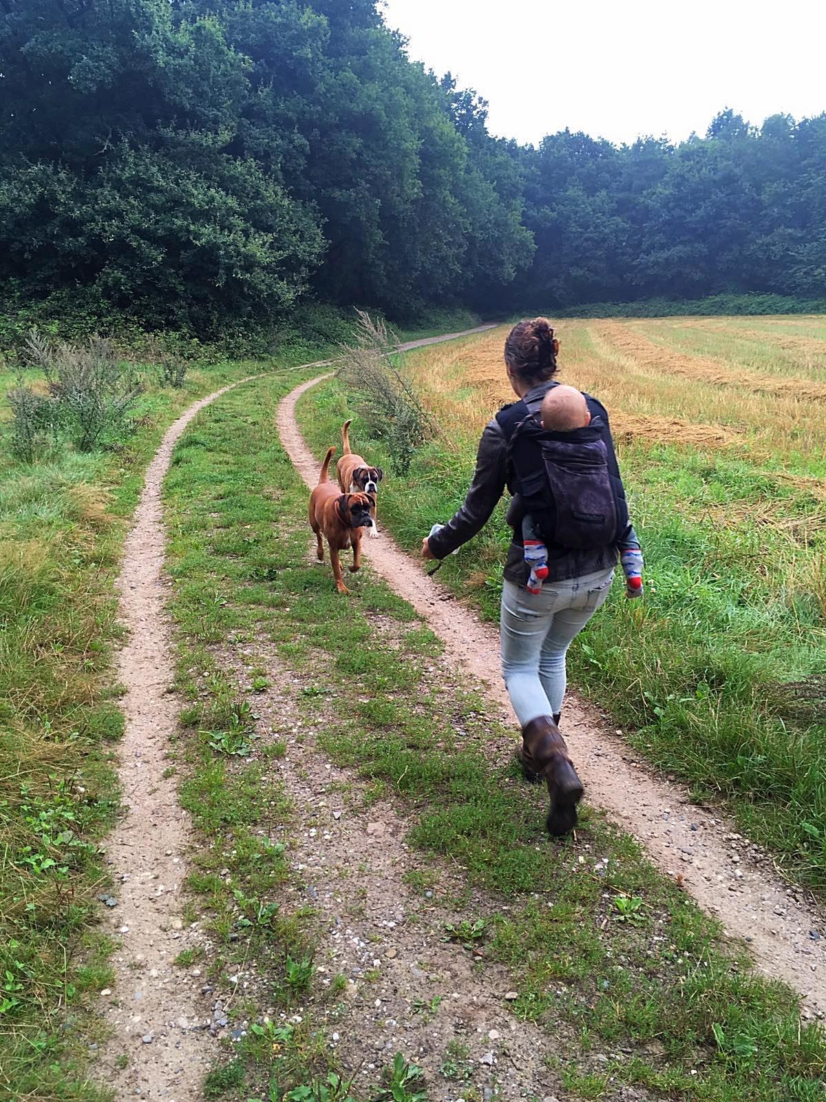 Naar het bos met de honden