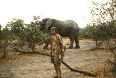 Im Chobe Nationalpark, Botswana