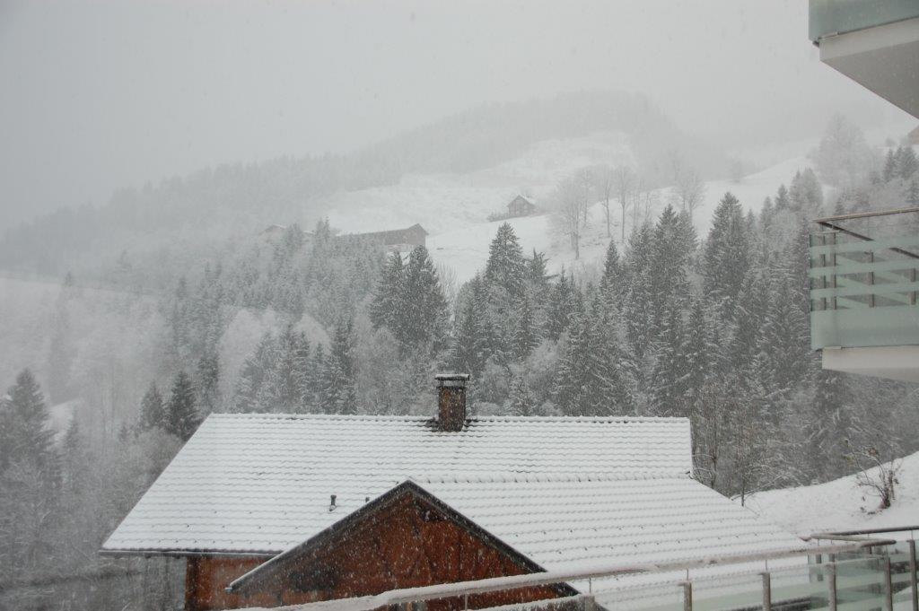 Appartement Zimbablick, Vorarlberg, im Winter