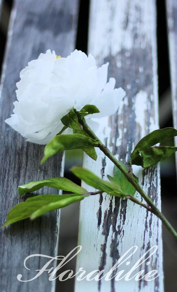 Pfingstrose aus Wafer Paper | Floralilie