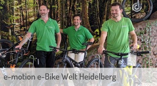 e-Mountainbike Händler in Heidelberg