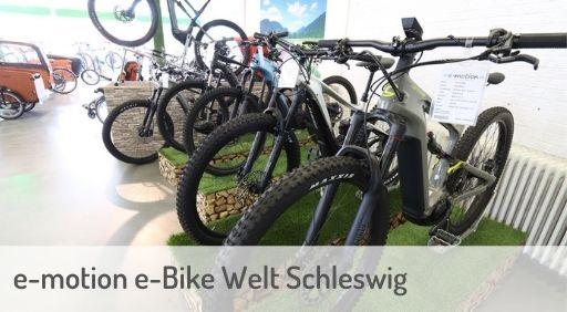 e-Mountainbike Händler in Schleswig