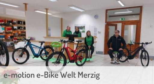 e-Mountainbike Händler in Merzig