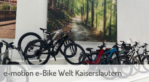 e-Mountainbike Händler in Kaiserslautern