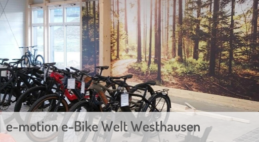e-Mountainbike Händler in Westhausen