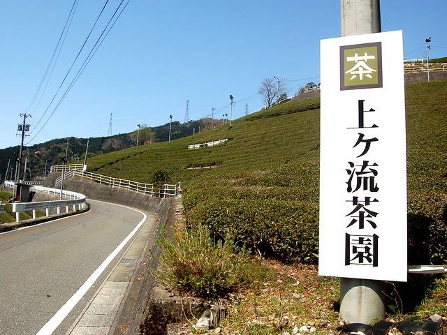 上ヶ流地区は江戸時代から続く茶の産地