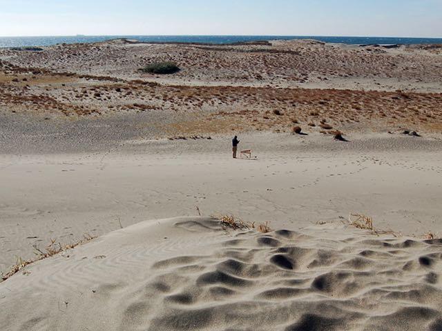 少し草の生えた砂丘の向こうに青い海