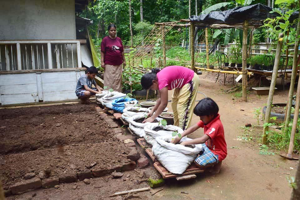 家庭での野菜づくりに取り組む子どもたち