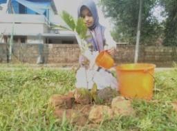苗木が大きく育つように、水やりも欠かさず頑張っ ています