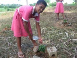 植えた苗木に水やりをするパウリナさん