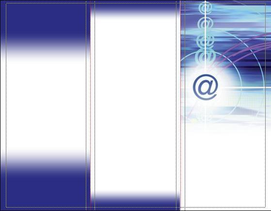 25 Brochures con riferimento all'informatica(punti 70)