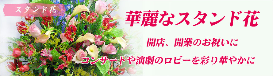 その他、コンサートなどのロビーや楽屋にも適したお祝い花です、