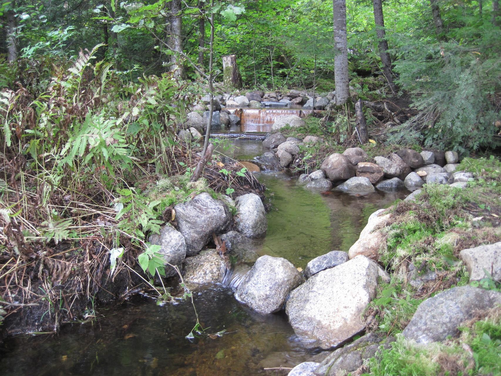 Aménagement d'habitats pour l'omble de fontaine (crédit Zec Batiscan-Neilson)