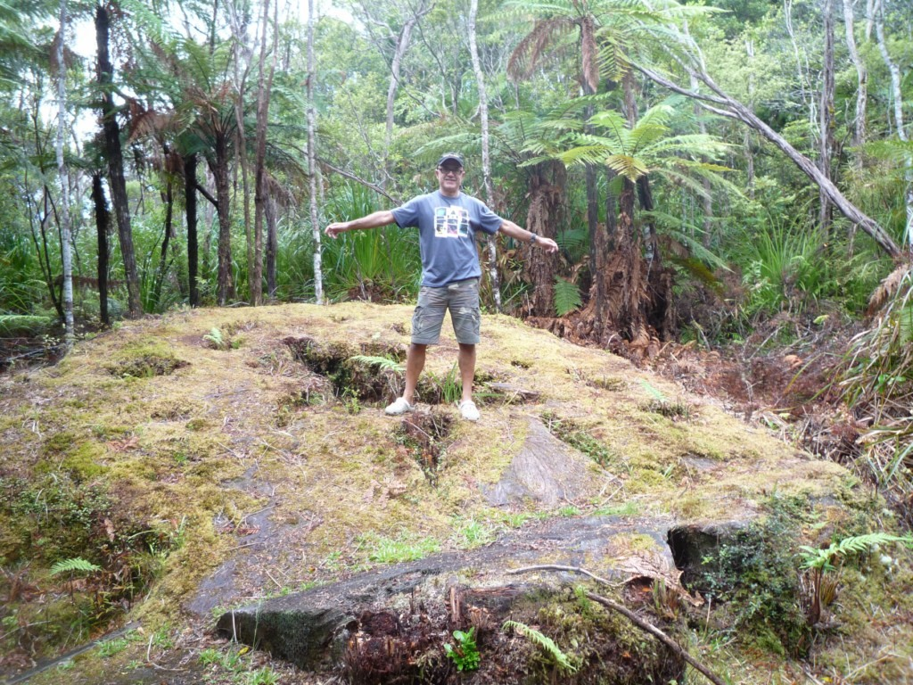 Restos de un karuri en Omahuta Forest