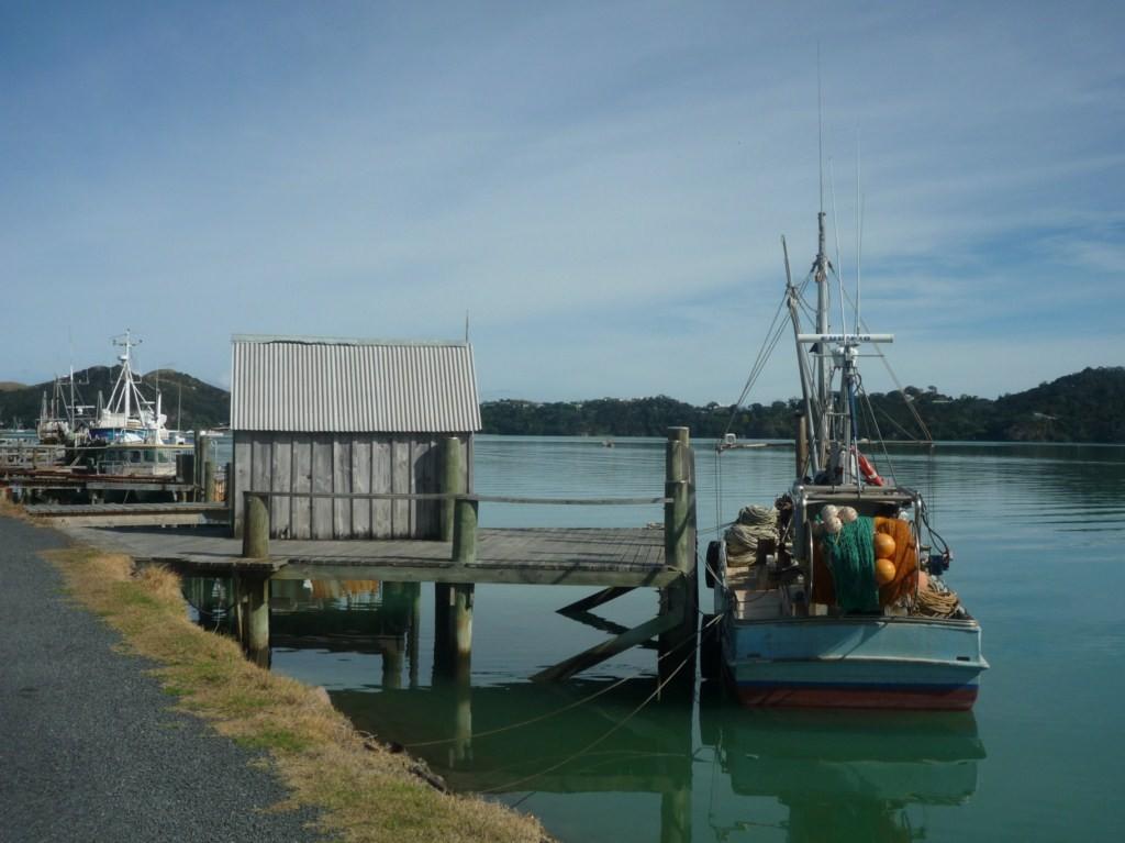 De vuelta en Coromandel Harbour