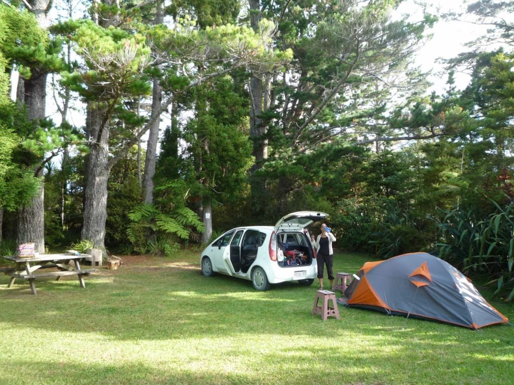 Camping en Putiki Forest