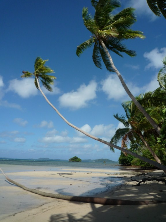Playa de Loma Loma