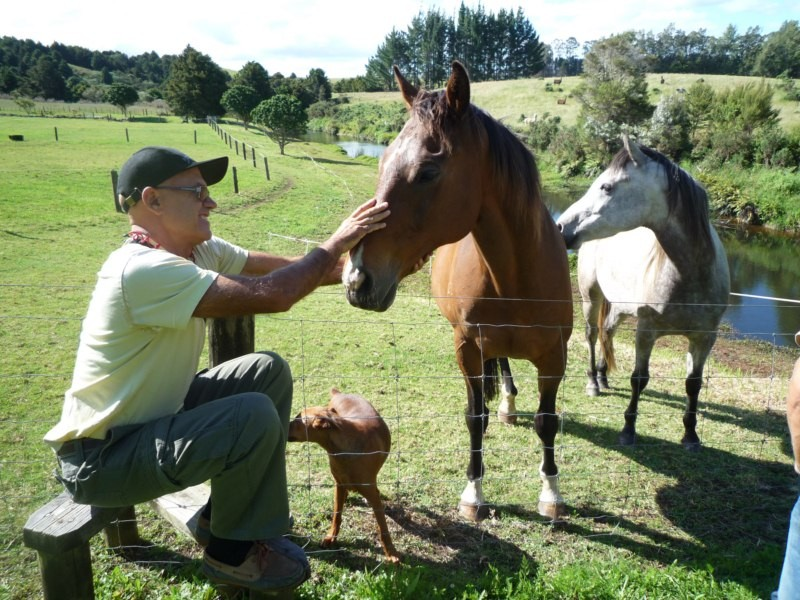 Hablando con los caballos