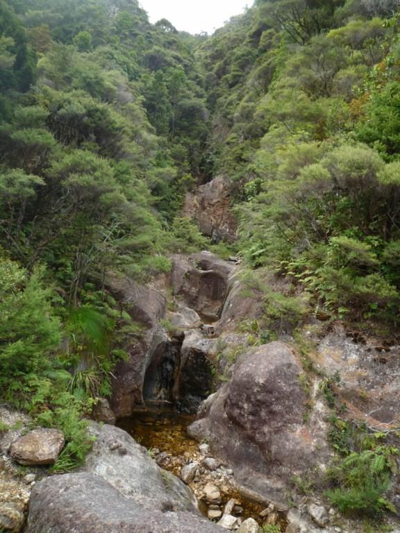 Kaiaraara trek