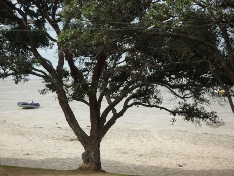 Oneroa beach y nuestro dinghy