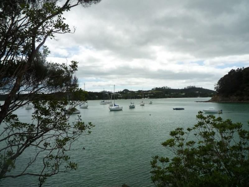 Barcos a boya en Paihia
